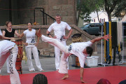 Capoeira Instructionals